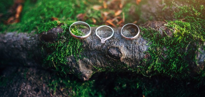 3 Rings on a Branch