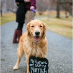 Best ways to announce your engagement